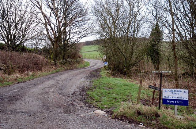 The road to New Farm