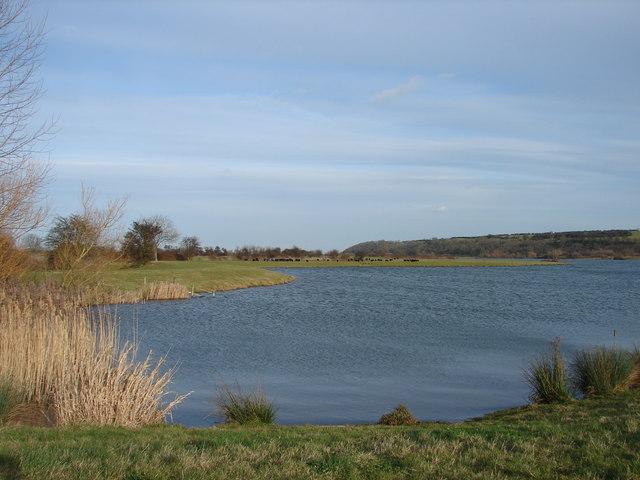 View of Sailing Lake Plus Black Sheep