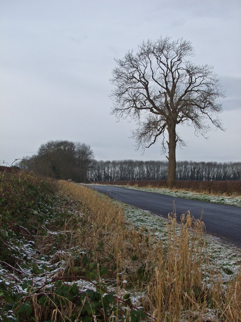 Wolds Way