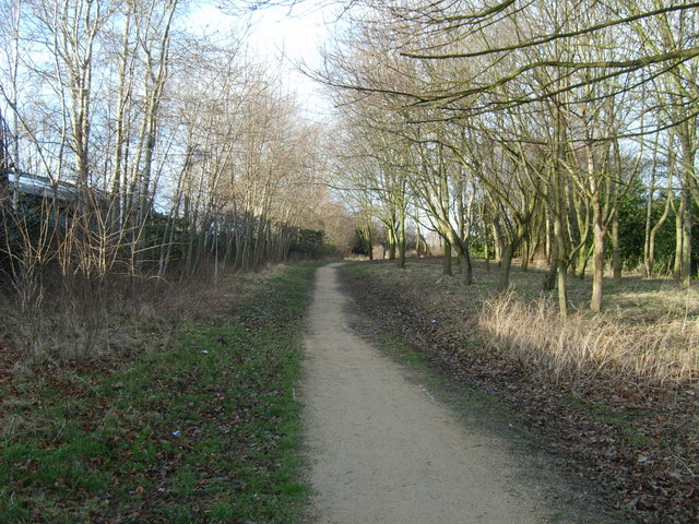 Bradley Path