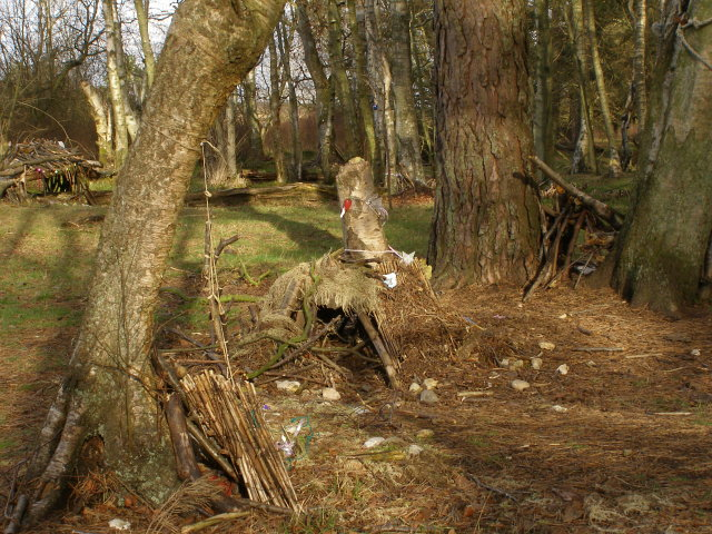 Fairy Glen, alongside Dockens Water, New Forest