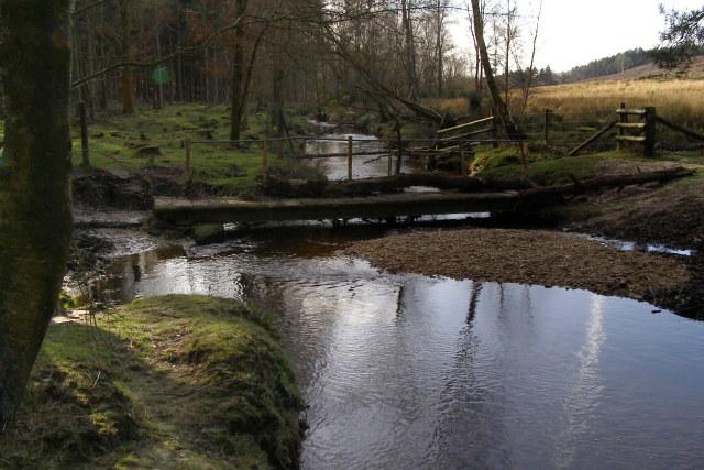 Dockens Water at Newlands Bridge, New Forest