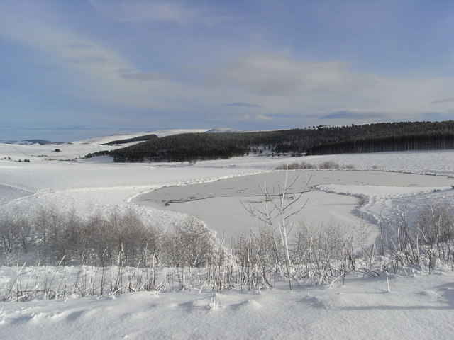 Frozen fishing pond at Ardgeith