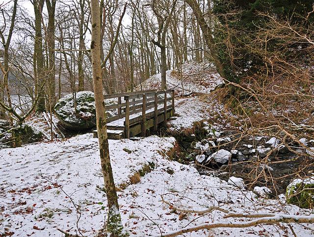 Bridge over the Allt an Fhionn burn in Glentarken Wood