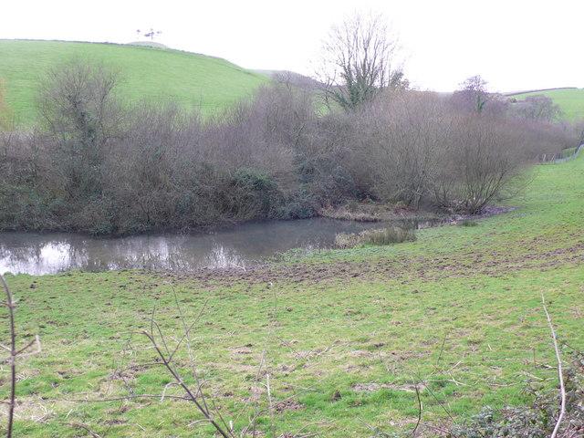 Pond near Old Warren Hill, Symondsbury