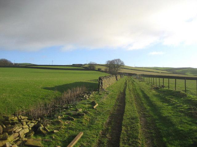 Green Lane above Bradley Gill