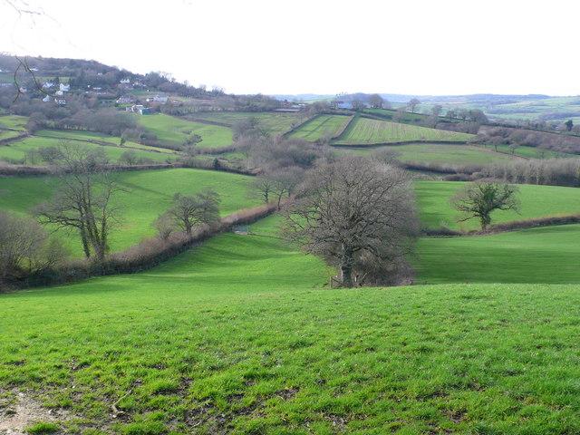 Ryall Bottom near Morcombelake, Dorset