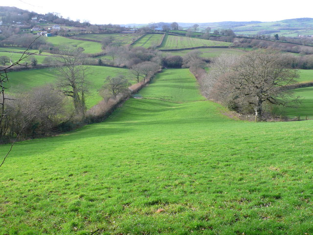 Ryall Bottom looking West from Monarch's Way