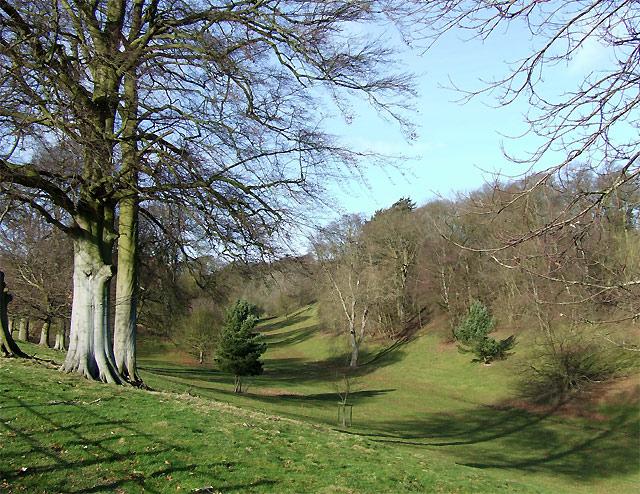 Baldwyn's Glen near Munslow, Shropshire