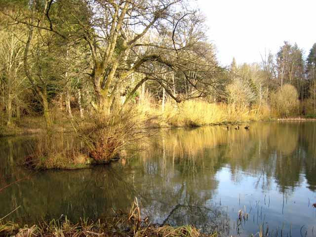 Boat House Pond