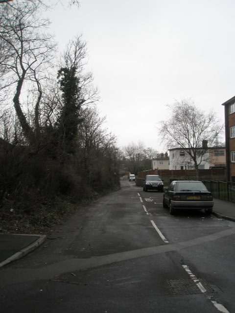 Looking down Old Wymering Lane