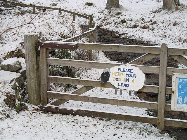 Gate, Kinloch Rannoch
