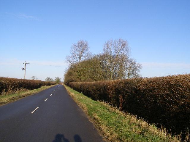 Creeton Road Plantation