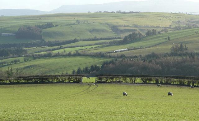 Upper Arrow valley