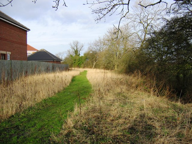 Path alongside Bassleton Beck