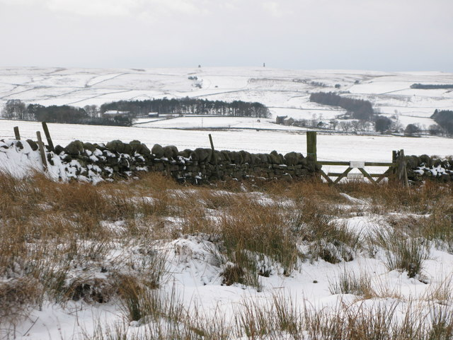 Snowy pastures near Glen Hill Farm
