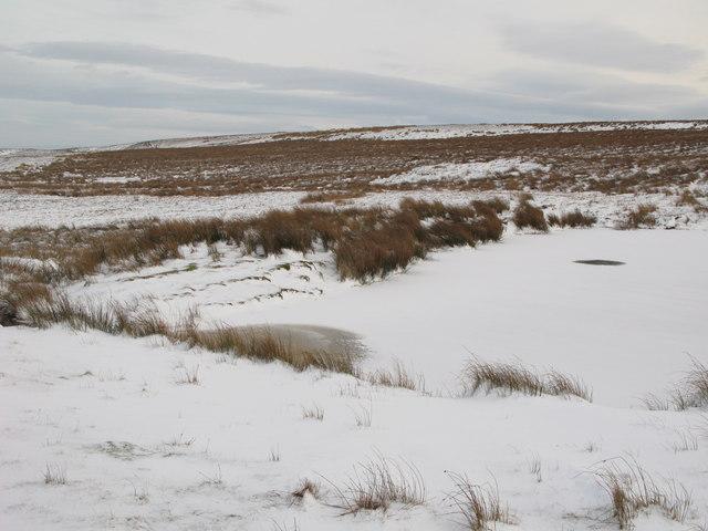 Frozen lough near Crawberry Hill (2)