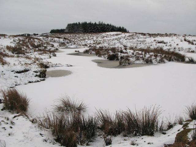Frozen lough near Crawberry Hill (4)