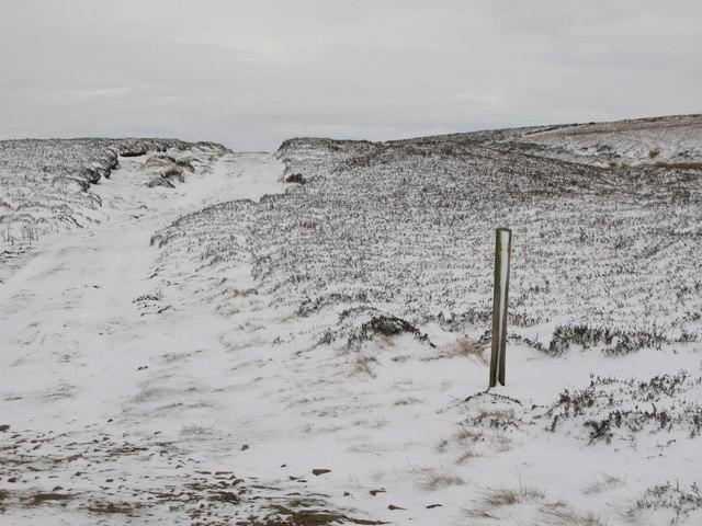 Snowy track on Burntridge Moor
