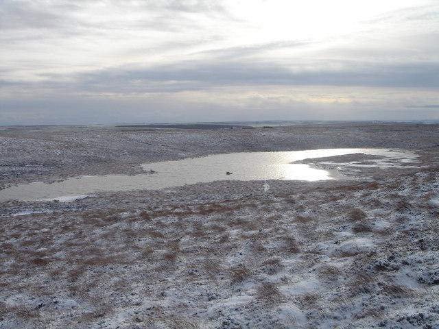 The Grassy Loch