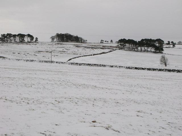 Pastures below Glen Hill Farm