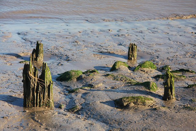 Old piles in the river