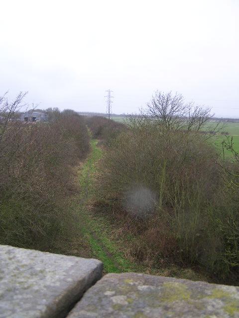 Derelict railway track