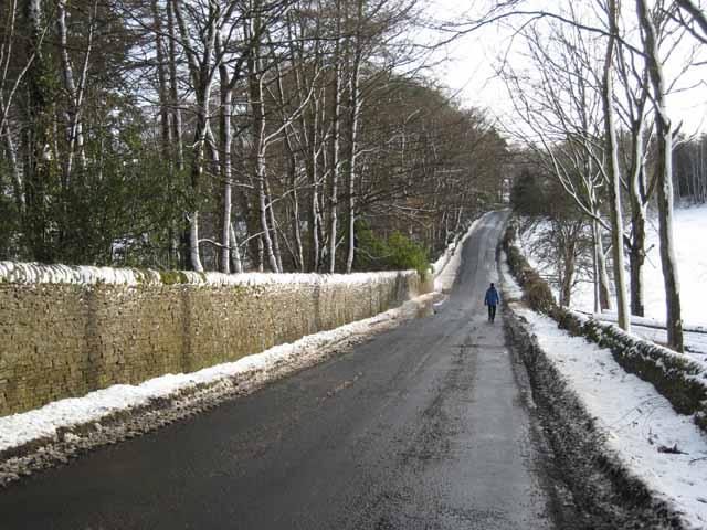 The road to Juniper