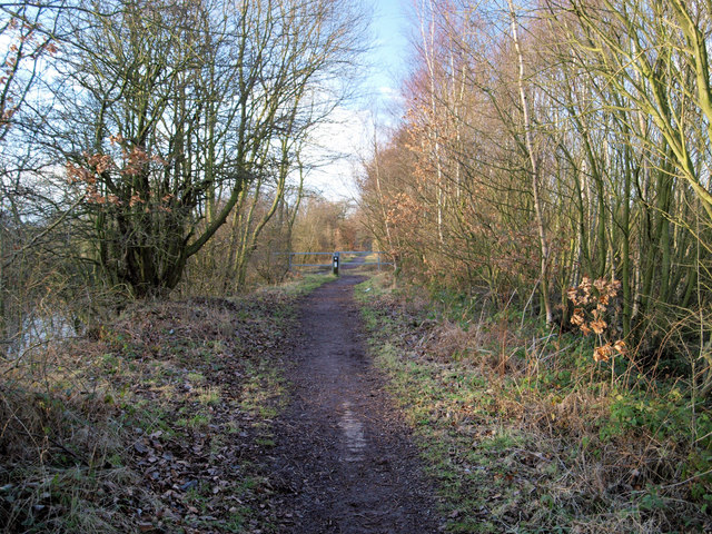 The Trans Pennine Trail alongside the disused Barnsley Canal