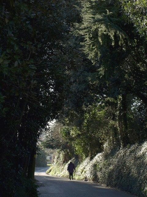 Forder Lane, Bishopsteignton