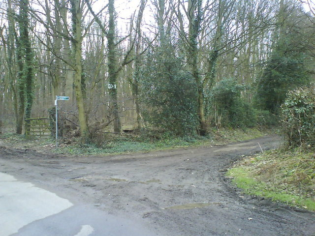 Ayres End Lane