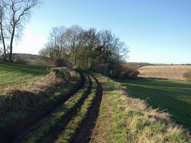 Green Lane near Ashwell