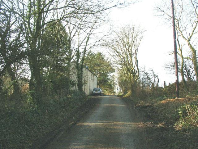 Approaching Bryn Marchog on the edge of Coed Mynydd-mawr