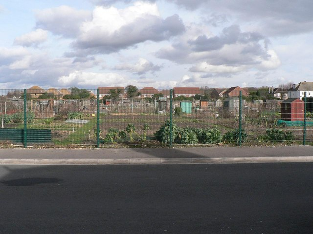 West Southbourne: allotments
