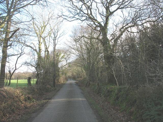 The Llwyndyrys road near Bryn Marchog