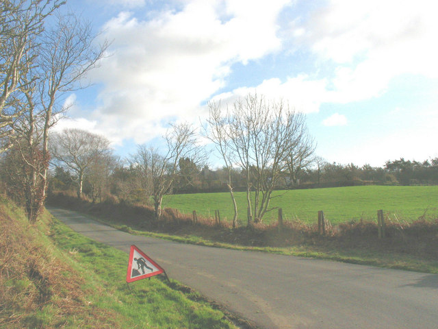 View across the road to grazing land on the north-western edge of Coed Mynydd-mawr