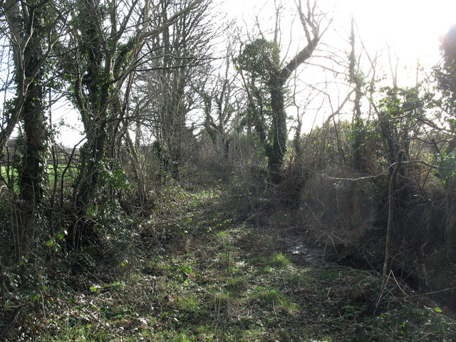 Overgrown track with public rights of way