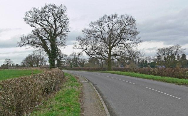 Stoke Road towards Stoke Golding