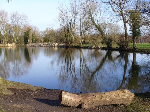 Spring Grove, Pond