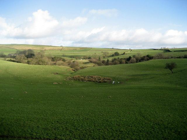Pastures on Silsden Moor