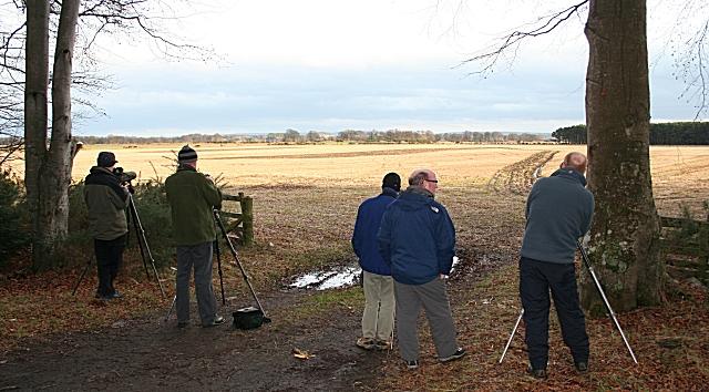 Birdwatchers at Pitgaveny