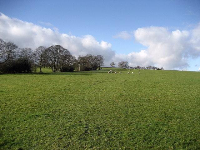 Fields north west of Silsden