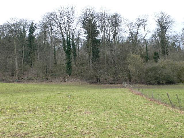 Eyarth House Woods