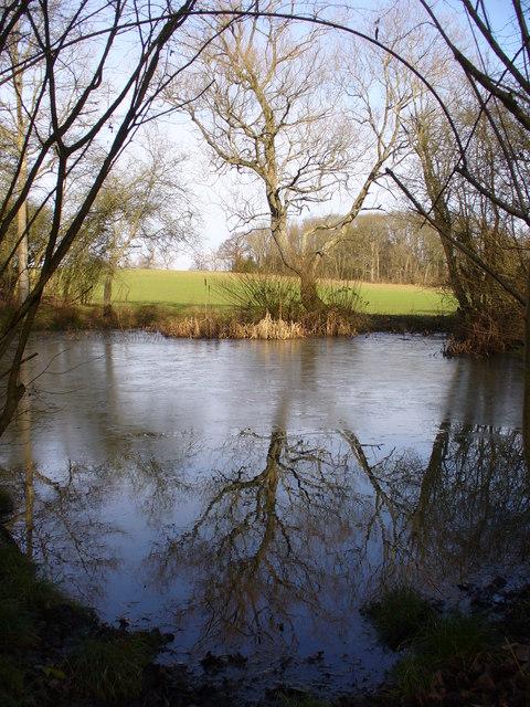Pond on Common Edge