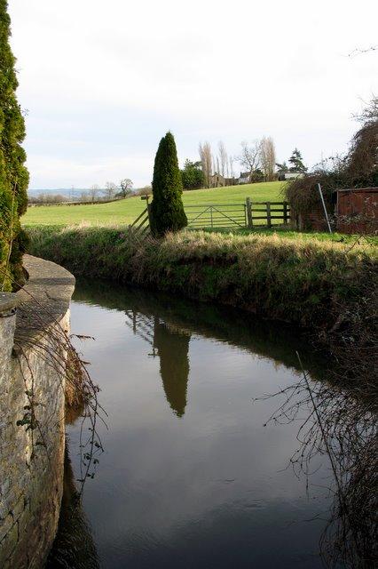River Sheppey in Upper Godney - facing east