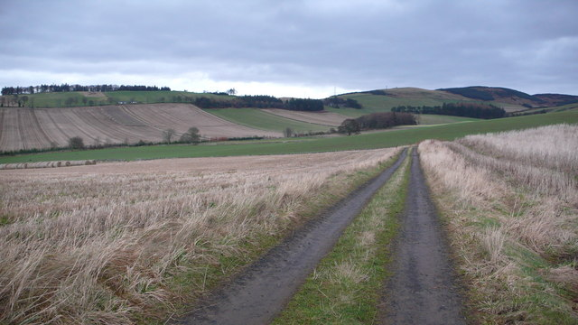 Track to Scotston Farm