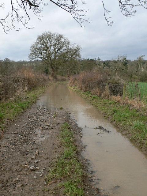 Flooded lane, near Plas Einion