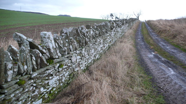 Dyke and track leading to Scotston Farm