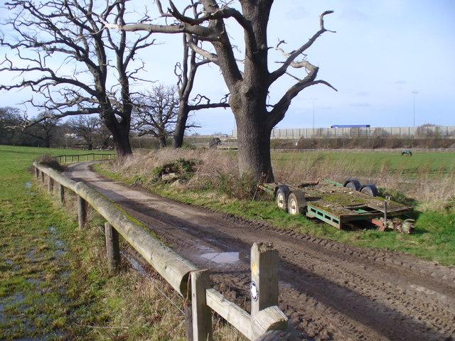 Track Near Bookham Lodge Stud
