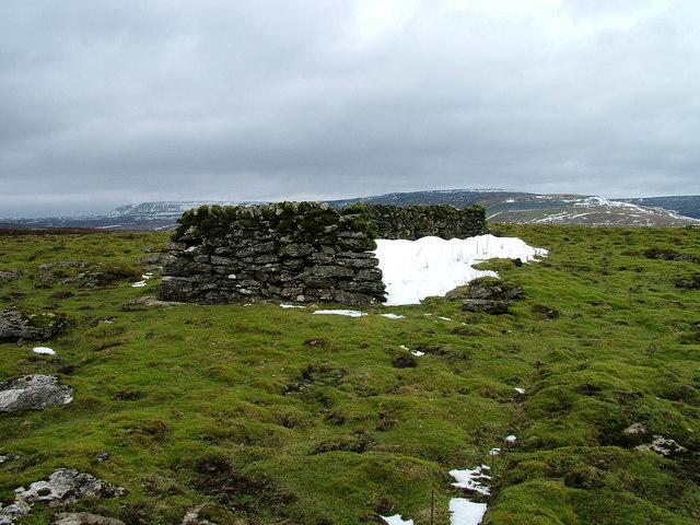 Sheepfold near Rennygill Sike